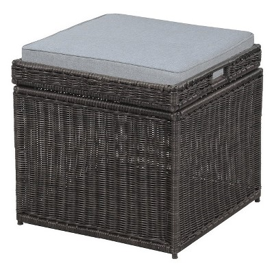 Outdoor Storage Trunk BRN - Project 62™