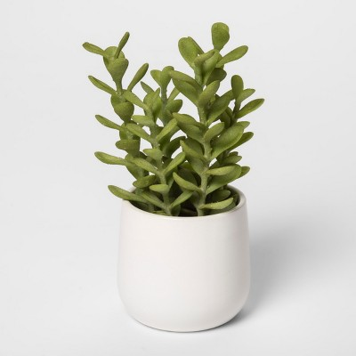 8  x 4  Artificial Succulent In Pot Green/White - Threshold™