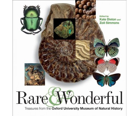 Rare and Wonderful : Treasures from Oxford University Museum of Natural History -  (Paperback) - image 1 of 1