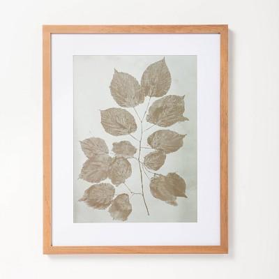 "16"" x 20"" Single Botanical Stem Framed Wall Art - Hearth & Hand™ with Magnolia"