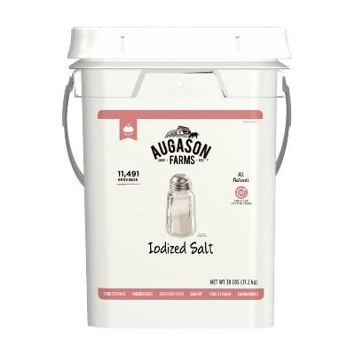 Augason Farms Iodized Salt Certified Gluten Free Long Term Bulk Food Storage 4-Gallon Pail 11,491 Servings