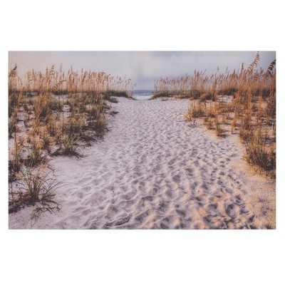 24 x36  Path To The Beach Photography Canvas Art White - Patton Wall Decor
