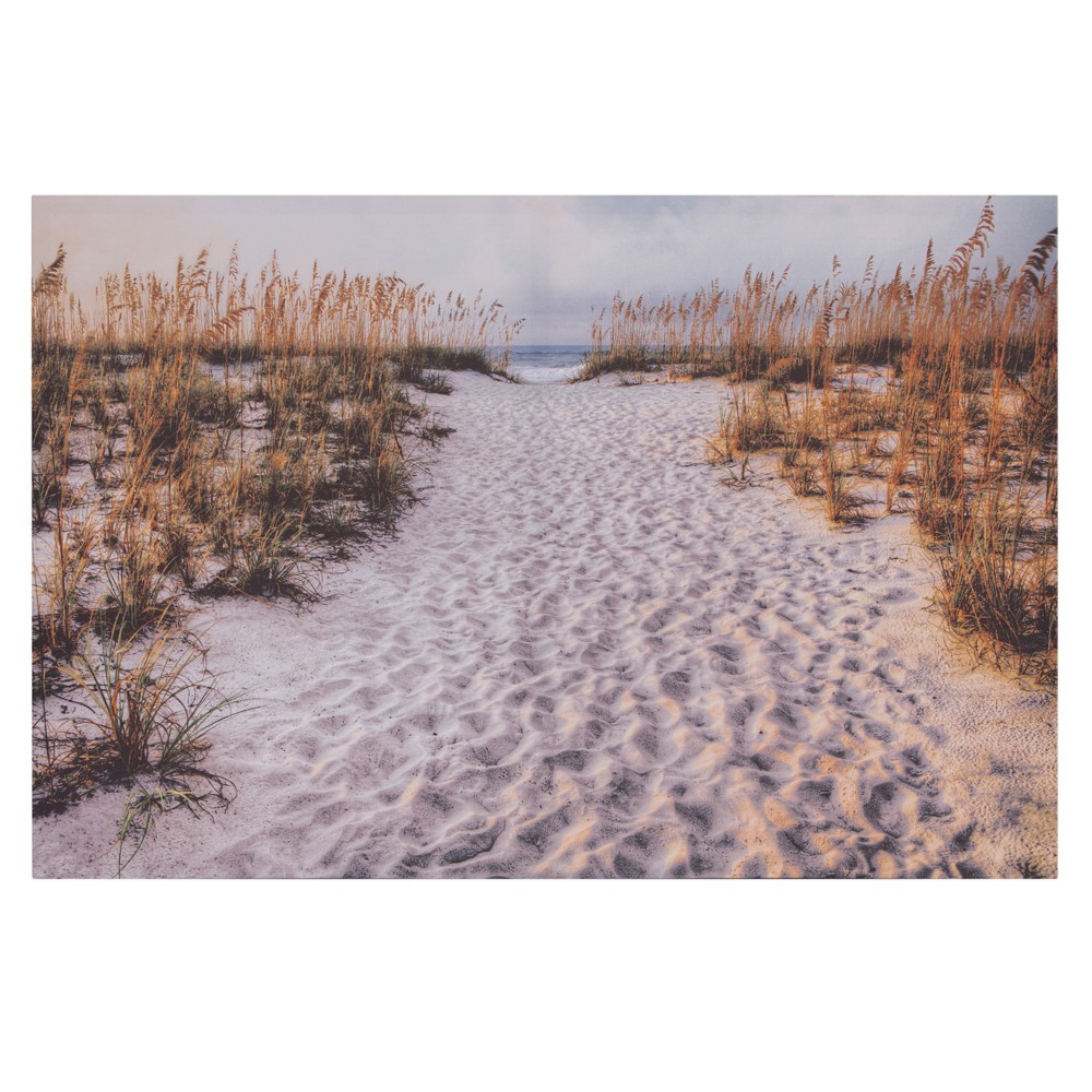 """Image of """"24""""""""x36"""""""" Path To The Beach Photography Canvas Art White - Patton Wall Decor"""""""