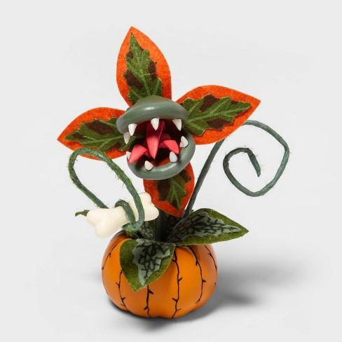 Creepy Decorative Halloween Faux Succulent (Orange) - Hyde & EEK! Boutique™ - image 1 of 1