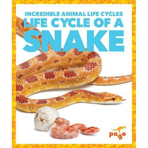 Life Cycle of a Snake - (Incredible Animal Life Cycles) by  Karen Latchana Kenney (Hardcover) - image 1 of 1