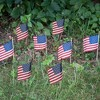 """4""""x6"""" 8pc Stick Flags - image 2 of 2"""