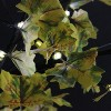 Northlight 5' Pre-Lit LED Lighted Fall Harvest Yellow Maple Leaf Artificial Tree - White Lights - image 3 of 3