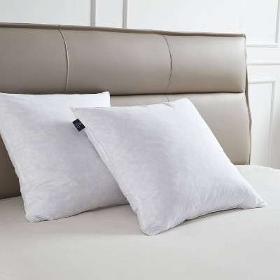"""20""""x20"""" Medium Firm 2pk Decorative Feather Pillow Insert - Scott Living"""