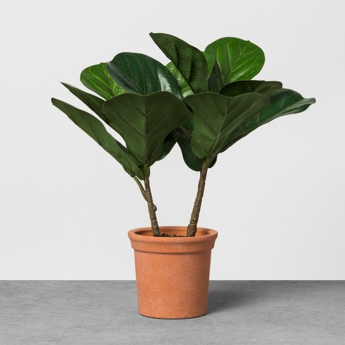 Faux Fiddle Leaf Plant in Terracotta Pot - Hearth & Hand™ with Magnolia - image 1 of 3