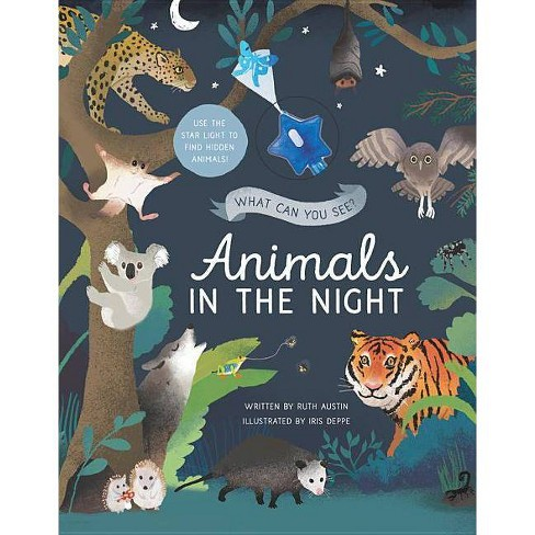 What Can You See? Animals in the Night - by  Ruth Austin (Hardcover) - image 1 of 1