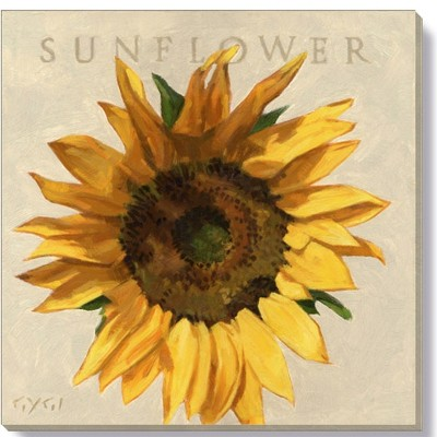 Sullivans Darren Gygi Sunflower Canvas, Museum Quality Giclee Print, Gallery Wrapped, Handcrafted in USA