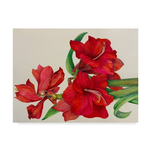 """18"""" x 24"""" Amaryllis Standing Tall by Joanne Porter - Trademark Fine Art - image 1 of 4"""