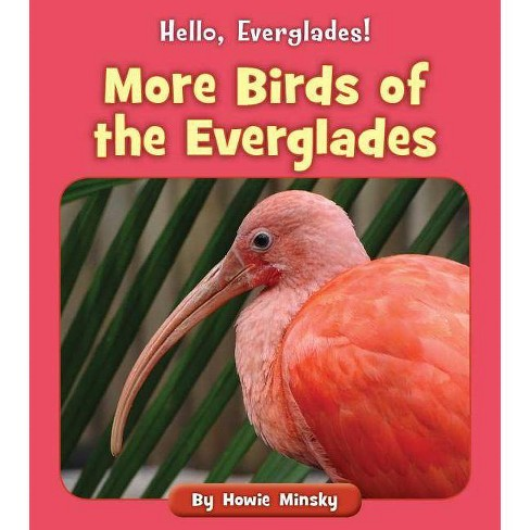 More Birds of the Everglades - (Hello, Everglades!) by  Howie Minsky (Paperback) - image 1 of 1