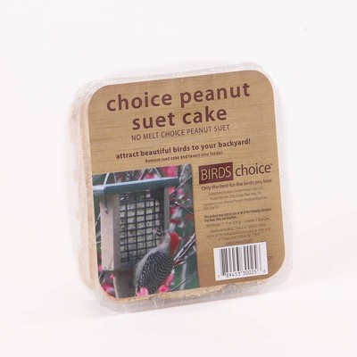 Bird's Choice Peanut Suet Cake 11.75oz, Case of 12