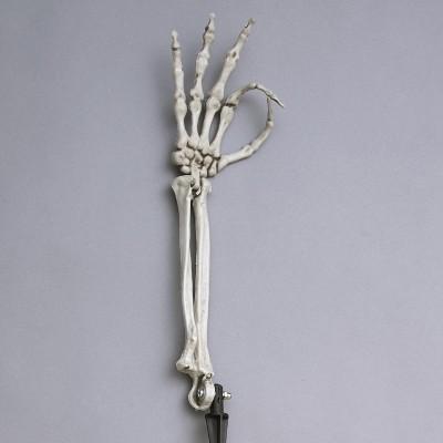 Lakeside Silly Skeleton Hand Gesture Garden Stake for Halloween Yard Decor