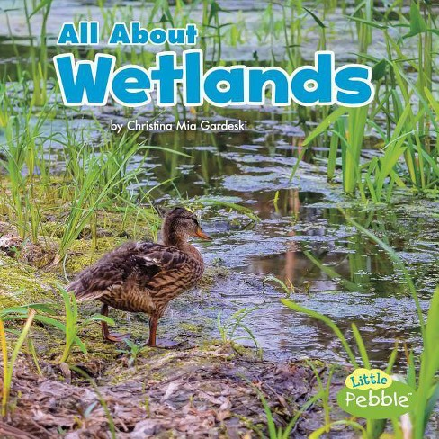 All about Wetlands - (Habitats) by  Christina MIA Gardeski (Hardcover) - image 1 of 1