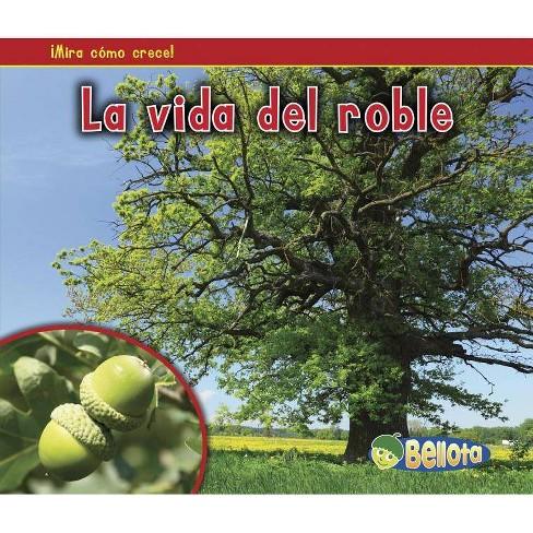La Vida del Roble - (Mira Como Crece!) by  Nancy Dickmann (Paperback) - image 1 of 1