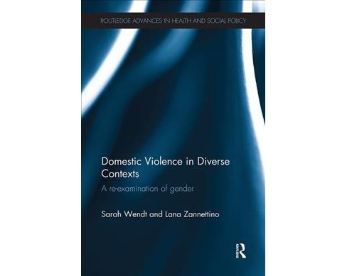 Domestic Violence in Diverse Contexts : A Re-examination of Gender -  Reprint (Paperback) - image 1 of 1