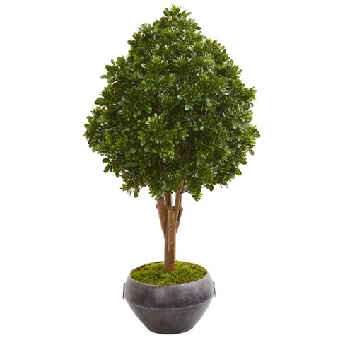 45 Tea Leaf Artificial Tree In Bowl Nearly Natural Target