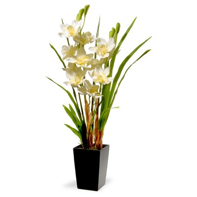 31  White Orchid Flowers - National Tree Company
