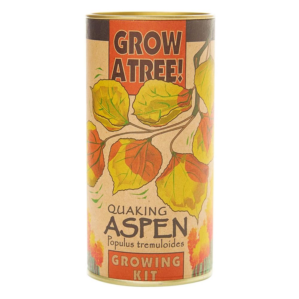 Image of Quaking Aspen Seed Grow Kit - The Jonsteen Company