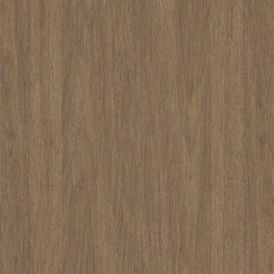 Driftwood Brown