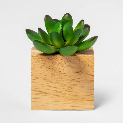 "3.5"" x 3.5"" Artificial Succulent in Magnetic Wood Pot - Project 62™"