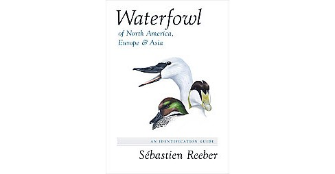 Waterfowl of North America, Europe, and Asia : An Identification Guide (Hardcover) (Su00e9bastien - image 1 of 1