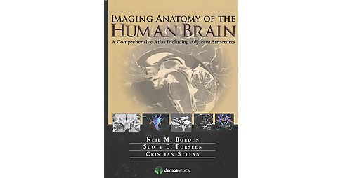 Imaging Anatomy of the Human Brain : A Comprehensive Atlas Including Adjacent Structures (Hardcover) - image 1 of 1