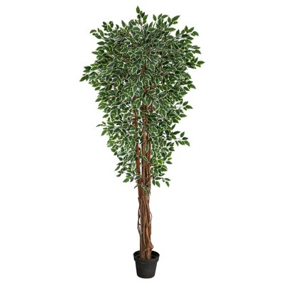"""70"""" Indoor/Outdoor Variegated Ficus Artificial Tree - Nearly Natural"""