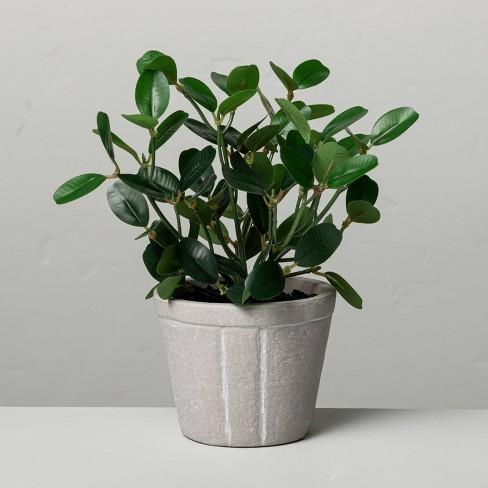 """7.5"""" Mini Faux Bean Potted Plant - Hearth & Hand™ with Magnolia - image 1 of 3"""