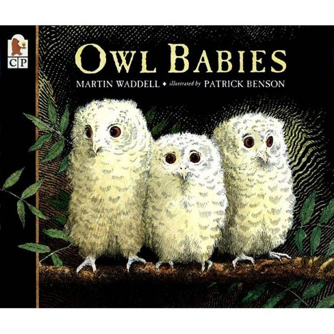 Owl Babies - by  Martin Waddell (Paperback) - image 1 of 1