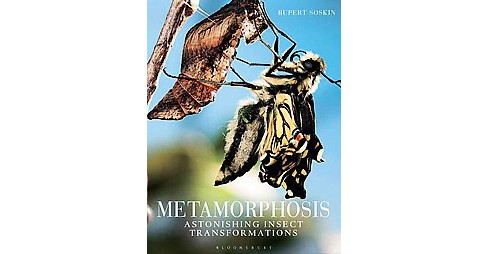 Metamorphosis : Astonishing Insect Transformations (Hardcover) (Rupert Soskin) - image 1 of 1