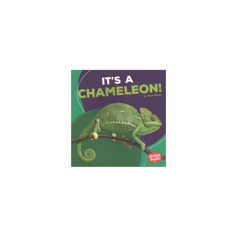 It's a Chameleon! (Paperback) (Tessa Kenan)