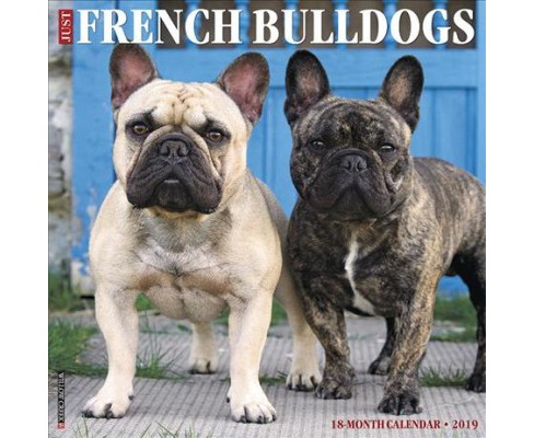 Just French Bulldogs 2019 Calendar -  (Paperback) - image 1 of 1