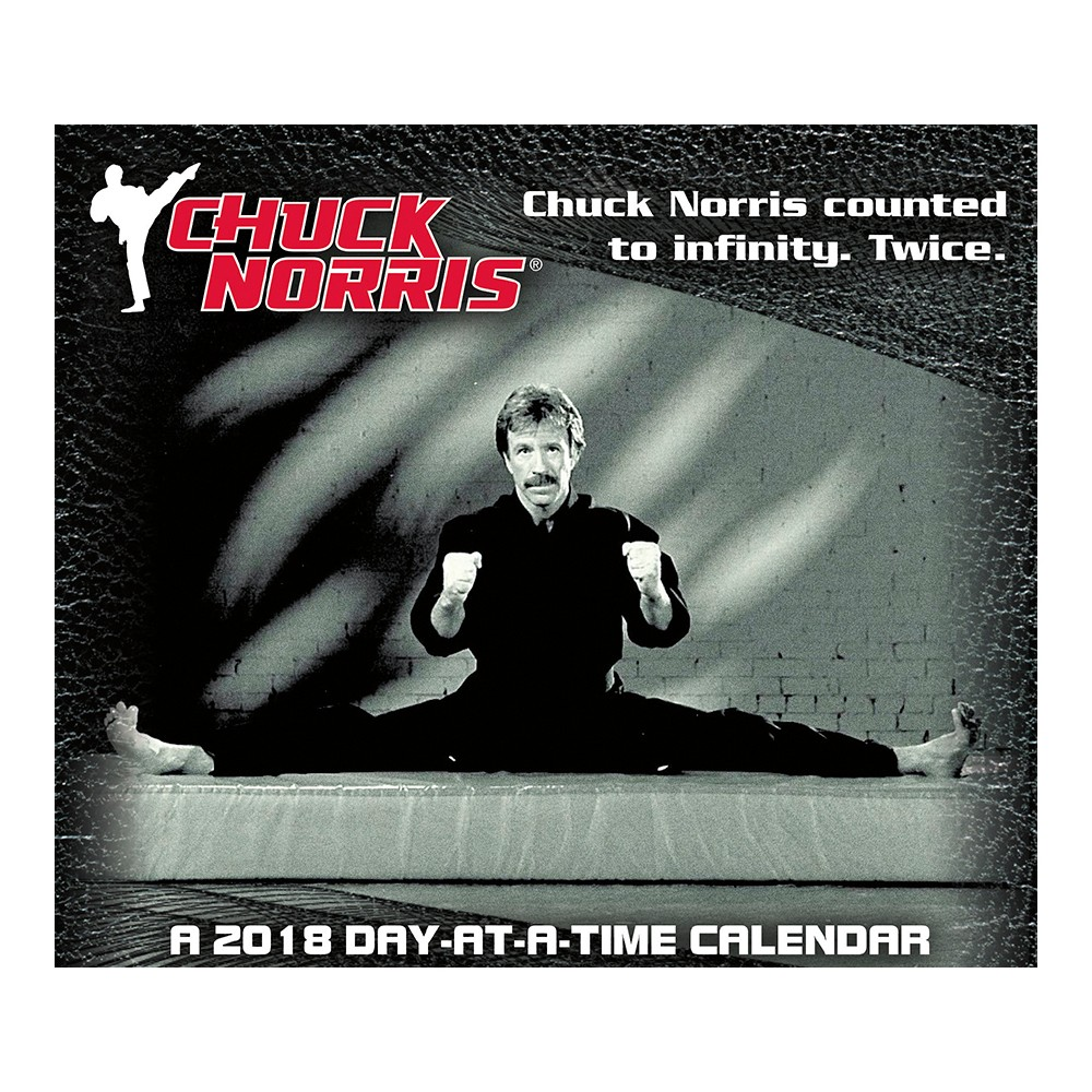 2018 Chuck Norris Day at a Time Box Calendar - Trends International, Multi-Colored