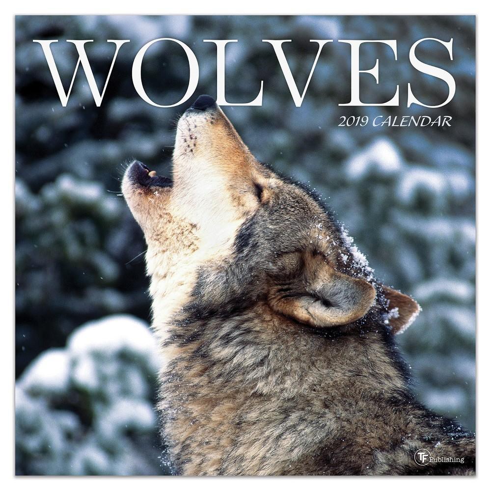 2019 Wall Calendar Wolves - TF Publishing, 2019 Tf Publishing Wolves Wall Calendar