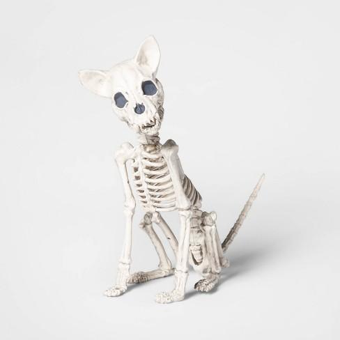 Halloween Skeleton.Chihuahua Skeleton Decorative Halloween Prop Hyde Eek Boutique