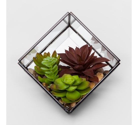 Artificial Succulent in Terrarium - Project 62™