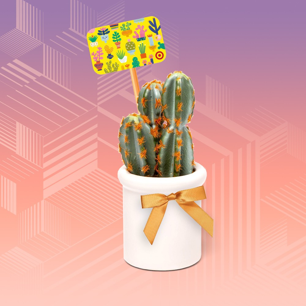 """8.5"""" x 3.2"""" Artificial Cactus in Ceramic Pot White - Threshold™, Cactus GiftCard, GoSili 4pk Extra-Long Silicone Straws Blue/Pink, Juvale 100-Piece Gold Satin Twist Tie Ribbon Bow, 2.5 X 3 inches"""