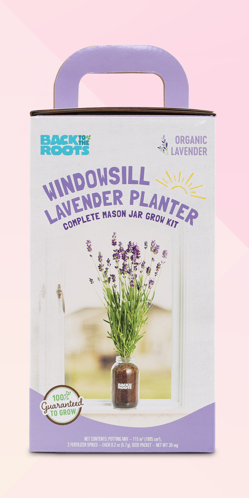 Back to the Roots Organic Lavender Windowsill Planter