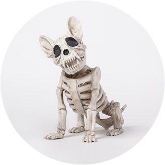 skeletons skulls