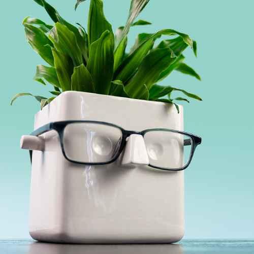 Face Plant Holder White
