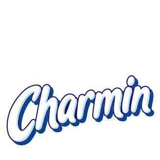 Charmin Toilet Paper Target