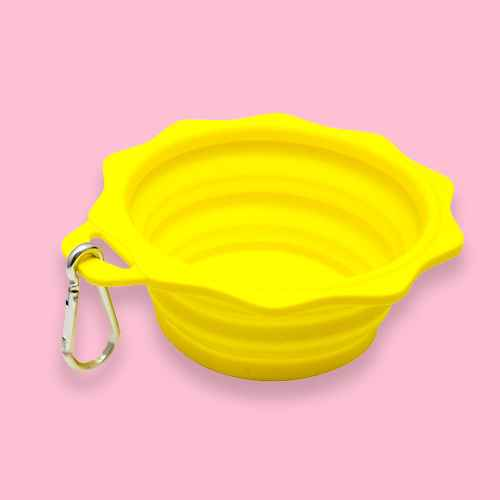 Sun Shaped Silicone Collapsible Dog & Cat Bowl - L - 4cups - Sun Squad™