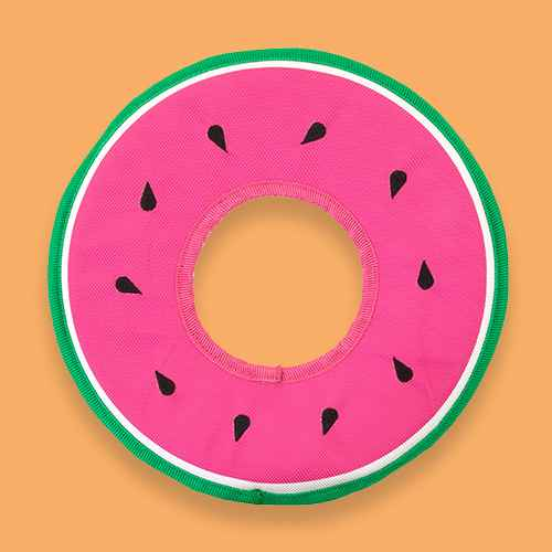 Watermelon Ring Toss Seeds Dog Toy - Sun Squad™