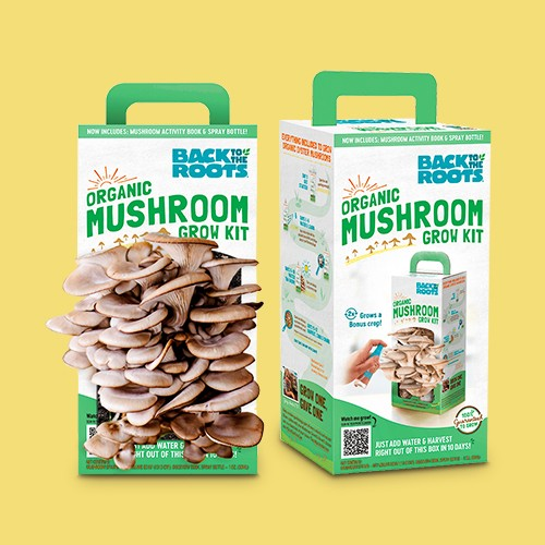 Back to the Roots Organic Mushroom Grow Kit, Back to the Roots Hydroponic Succulent & Cactus Grow Kit