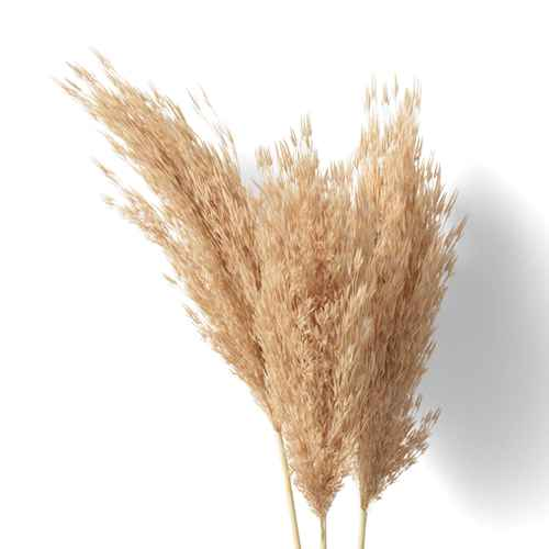 "28"" Artificial Fluffy Grass Stem - Threshold™"