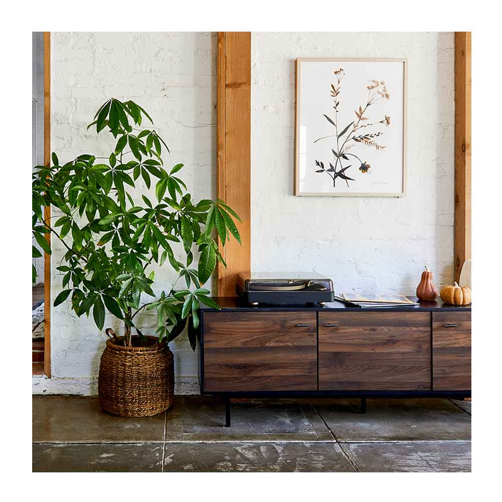 """Deepwell Inset TV Stand for TVs up to 60"""" - Project 62™, Medium Ceramic Pumpkin Honey - Threshold™, Medium Ceramic Pumpkin/Gourd Orange - Threshold™, Large Ceramic Pumpkin Cream - Threshold™, heyday™ Turntable - Gray, (Set of 2) 24"""" x 30"""" Wildflowers Framed Wall Art - Threshold™, 14"""" x 16"""" Harvest Braided Banana Basket with Leather Handles - Threshold™, Temptations - Number 1's (Target Exclusive, Vinyl), Taylor Swift - evermore (Target Exclusive, Vinyl), Taylor Swift - folklore (Target Exclusive, CD), 7'X10' Albion Persian Rug Cream/Black - Threshold™, 36"""" x 18"""" Artificial Monstera Plant in Ceramic Planter White - LCG Florals"""