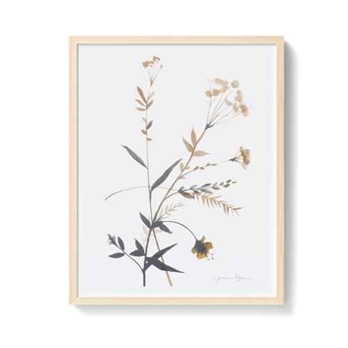 "(Set of 2) 24"" x 30"" Wildflowers Framed Wall Art - Threshold™"